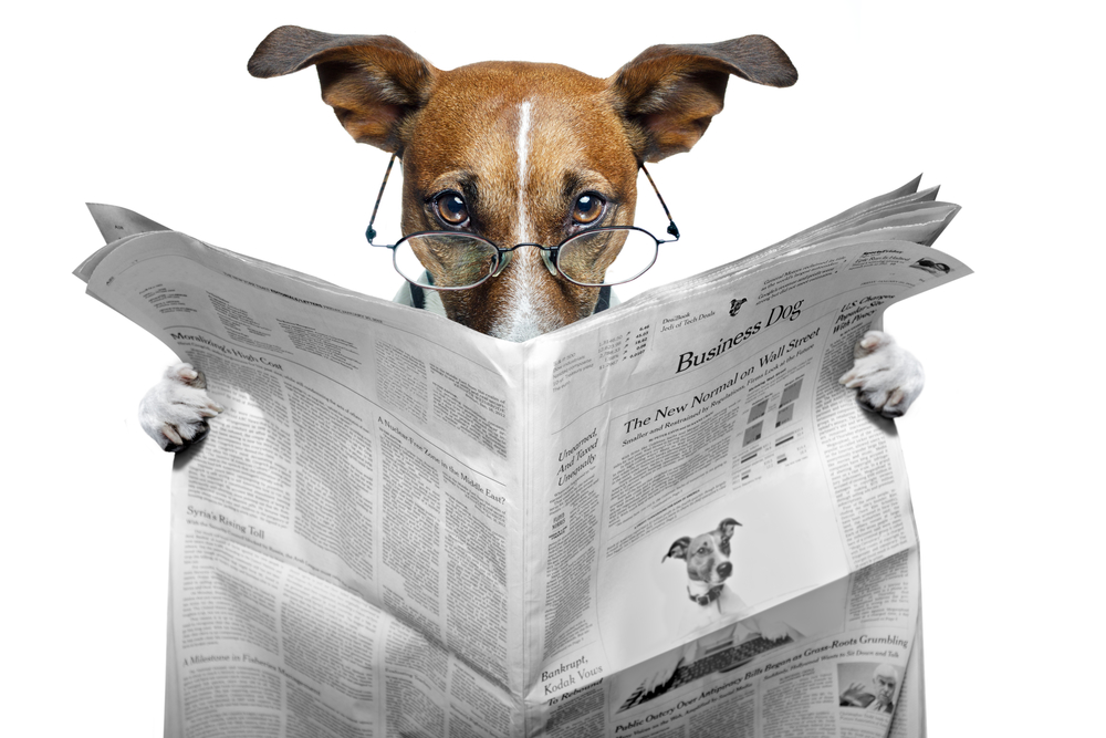 Dog Reading Dog-reading-paper.jpg